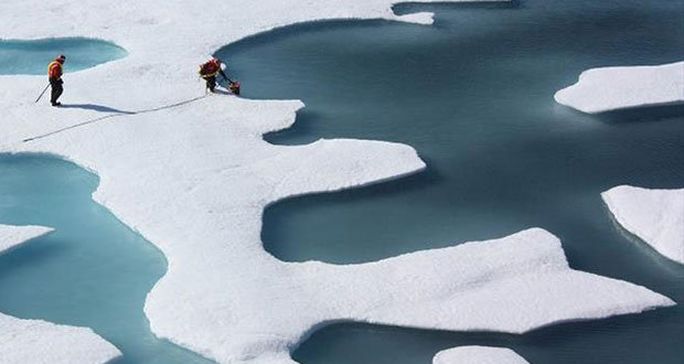 Melting sea ice is forming characteristic puddles on its surface © NASA Goddard Space Flight Center, CC BY 2.0